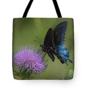 Pipevine Swallowtail Visiting Field Thistle Din158 Tote Bag