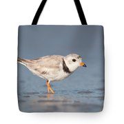 Piping Plover I Tote Bag