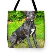 Pit Bull Terrier II Tote Bag