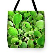 Pitcher Plants Palm Springs Tote Bag