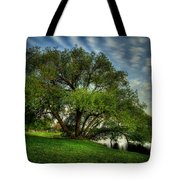 Pithers Willow Tote Bag