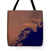 Pittsburgh Sunset  Tote Bag