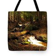 Placer Creek Tote Bag
