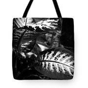 Plant 8658 Tote Bag