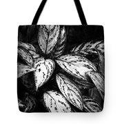 Plant 8659 Tote Bag