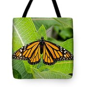 Plant Milkweed And Save The Monarch Butterfly Tote Bag