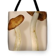 Plant - Mushrooms - I'm So Proud Of My Daughter Tote Bag by Mike Savad