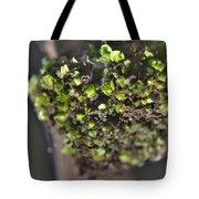 Plant Mutation Tote Bag
