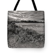 Plants On The Alvord Desert Tote Bag