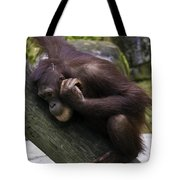Play Day Tote Bag