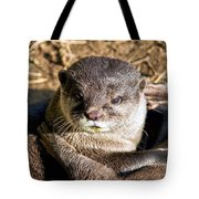 Play Time For Otters Tote Bag