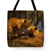 Play Time Tote Bag by Thomas Young