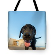 Playful Dog Closeup Tote Bag