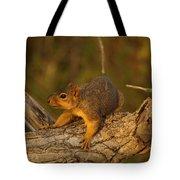 Playful Tote Bag