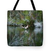 Playful Pelican Tote Bag