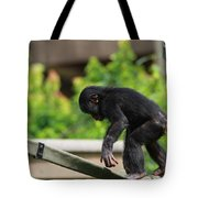 Playful Young Monkey Tote Bag