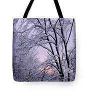Playhouse Through Snow Tote Bag
