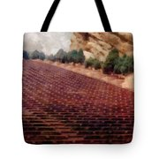 Playing At Red Rocks Tote Bag by Michelle Calkins