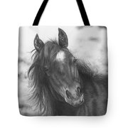Playing Before The Storm Tote Bag