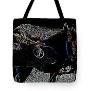 Playing Burros Tote Bag