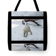 Playing With Snow Tote Bag