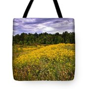 Pleasant Meadow Foreboding Sky Tote Bag