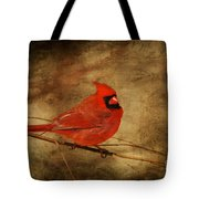 Please Feed The Birds Tote Bag