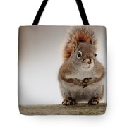 Please May I Have Some More? Tote Bag