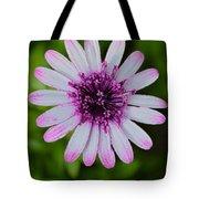 Pleasing Beauty Tote Bag