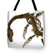 Pleisiosaurus, Mesozic Marine Reptile Tote Bag