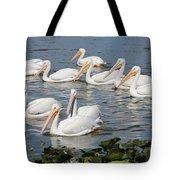 Plenty Of Pelicans Tote Bag