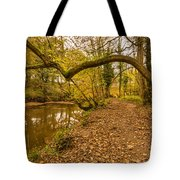 Plessey Woods Riverside Footpath Tote Bag