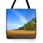 Pluff Mud And Salt Marsh At Hunting Island State Park Tote Bag