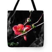 Plum Blossom 3 Tote Bag