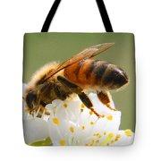 Plum Full Of Bees Tote Bag