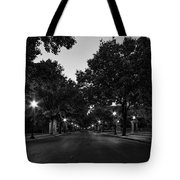 Plum Street To Franklin Square Tote Bag