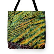Feathers Of Time Tote Bag