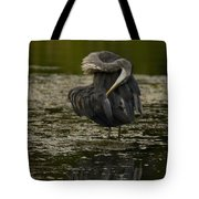 Plumage Perfection Tote Bag