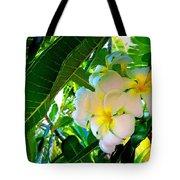 Plumeria Beauty Tote Bag
