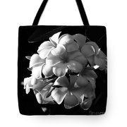 Plumeria Black White Tote Bag