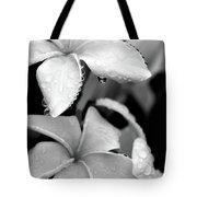Plumeria Drip Tote Bag
