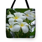 Plumeria In The Rain Tote Bag