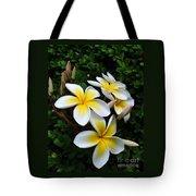 Plumeria In The Sunshine Tote Bag