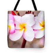 Plumerias Of Paradise 10 Tote Bag