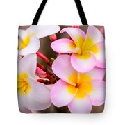 Plumerias Of Paradise 12 Tote Bag