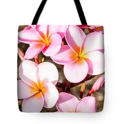 Plumerias Of Paradise 2 Tote Bag