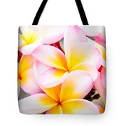 Plumerias Of Paradise 6 Tote Bag