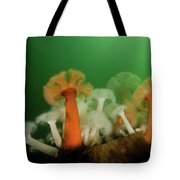Plumose Anemone In Puget Sound Tote Bag