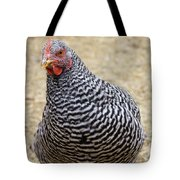 Plymouth Barred Rock Hen Tote Bag