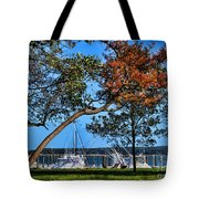 Plymouth Harbor In Autumn Tote Bag